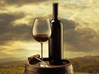 Французское вино: история, правила выбора и советы по выбору качественного продукта (75 фото + видео)