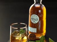 Ирландский виски: марки, бренды, нюансы и особенности выбора лучших спиртных напитков (85 фото + видео)