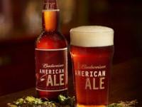 Красное пиво — лучшие марки, особенности, производители, сочетания и лучшие рецепты приготовления (125 фото и видео)