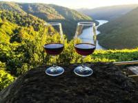 Красное вино — польза, крепость, особенности производства и хранения (145 фото + видео)