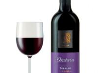 Мерло вино — история создания, вкус, цвет, плотность, содержание спирта и основные отличия (120 фото + видео)