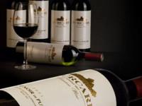 Молдавские вина — история, особенности, сорта винограда и его особенности выращивания (90 фото и видео)