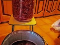 Рецепты как сделать вино — домашние рецепты и советы как и из чего изготовить вкусное вино своими руками (100 фото + видео)