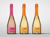 Вина шато — классификация, особенности напитка и советы как сделать правильный выбор вина (видео и 105 фото)