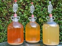 Пропорции для браги — рецепты приготовления, создаем качественный продукт и обзор необходимых ингредиентов (115 фото)