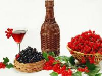 Вино из смородины: домашние вина из черной и красной смородины