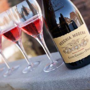 Ламбруско вино: виды, стоимость, описание, ингредиенты и технология производства (90 фото + видео)