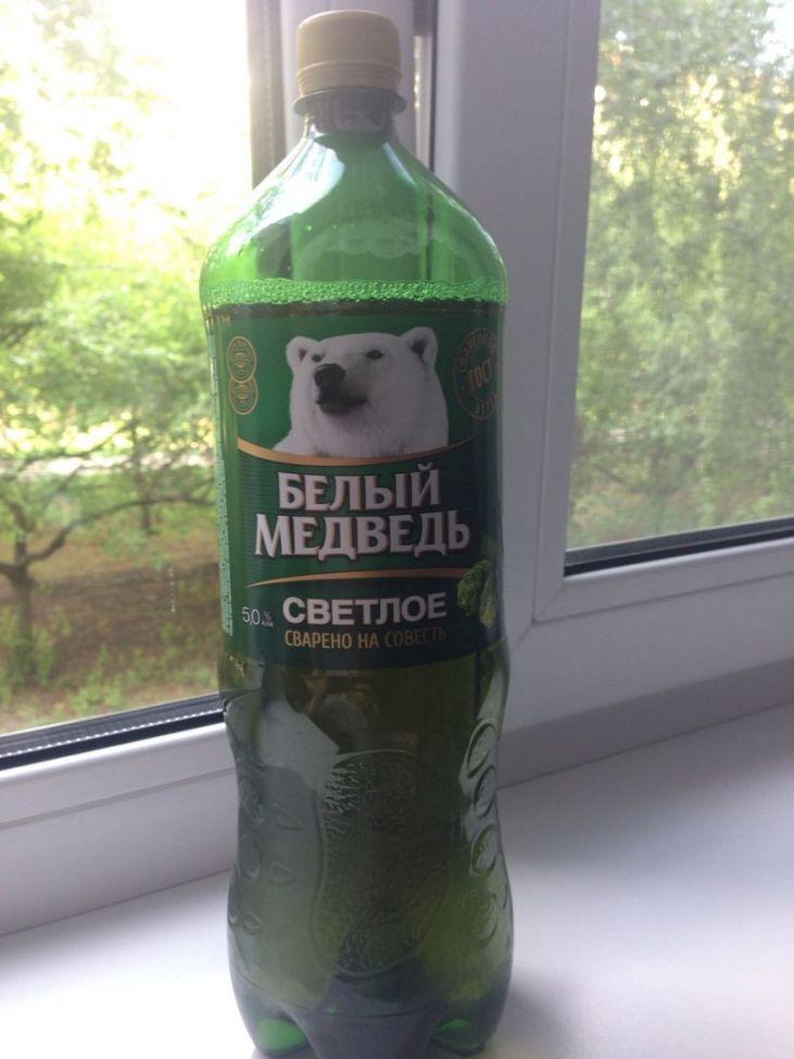 экране любят пиво белый медведь фото зубрята